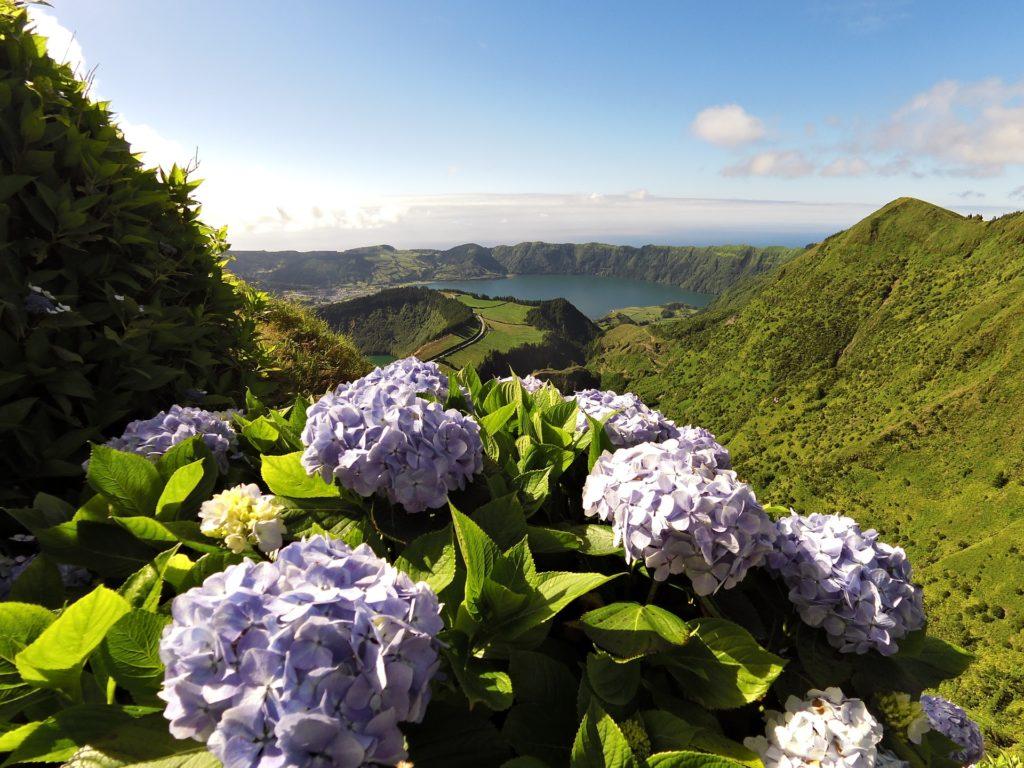 погода на азорских островах