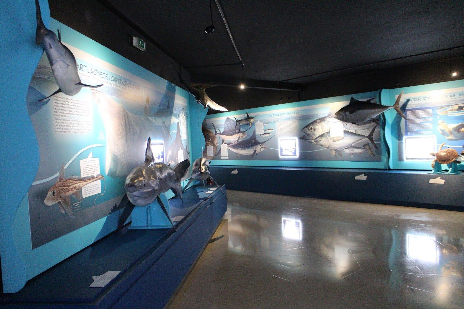 Морской музей в Кашкайш